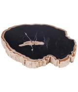 Petrified wood Käseplatte